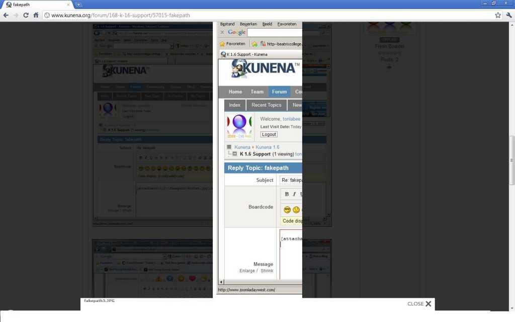 kunena-googlechrome-imagebug1.jpg