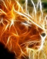 Lionheart's Avatar