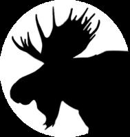 Bigmoose's Avatar